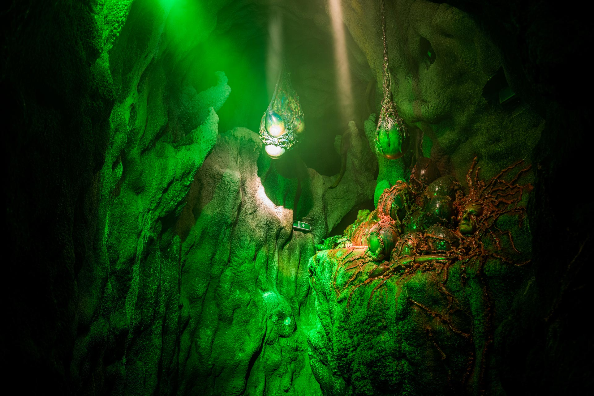 Green wall of Ghoul Haunted House at Traumatica Europa-Park