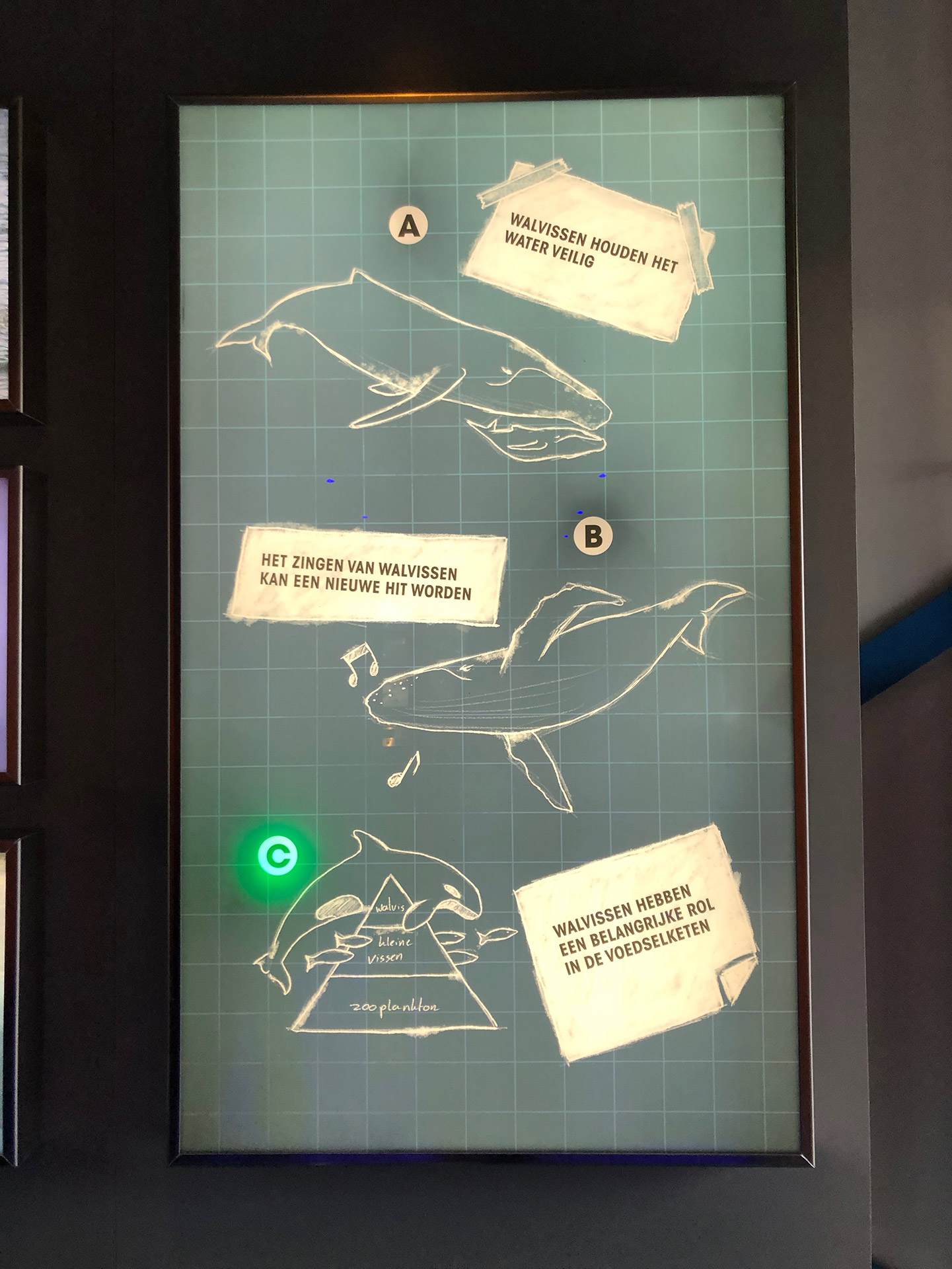 The answer board of trivia game at Wildlands Sonar Station